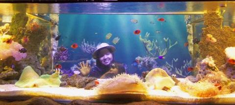 aquarium di jatimpark 2